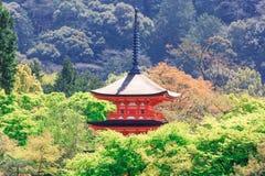 Пагода Koyasu от виска Kiyomizu стоковые фотографии rf