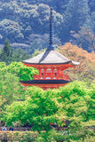 Пагода Koyasu от виска Kiyomizu стоковая фотография rf