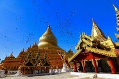 пагода paya shwezigon в Мьянме Стоковые Фото