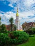 Пагода (Phra тот приятель Choeng) 4 Стоковая Фотография RF