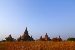 Пагоды Bagan на восходе солнца Стоковая Фотография RF