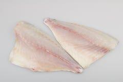 Пагр филе сырых рыб Стоковые Изображения