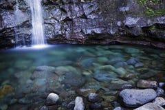 падает бассеин oahu manoa гаваиских островов Стоковые Фотографии RF