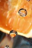 падает помеец Стоковое фото RF