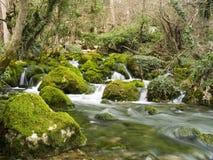 падает река горы малое стоковое изображение