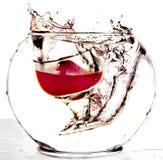 падает стеклянное красное вино вазы Стоковое фото RF