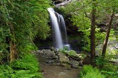 падает grotto к тропке Стоковая Фотография