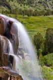 падая вода лужка Стоковые Изображения