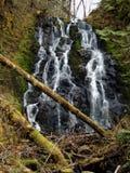 падая вода Стоковые Изображения