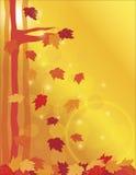 Падая кленовые листы в иллюстрации пущи иллюстрация вектора