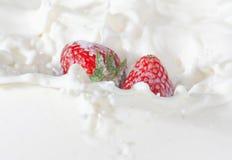 падая клубники выплеска молока Стоковые Фотографии RF