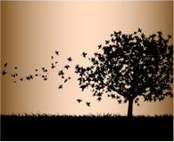 падая листья бесплатная иллюстрация