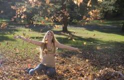 падая листья Стоковая Фотография RF
