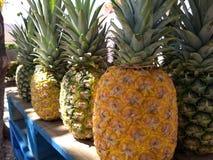 Падение ананасов меда Стоковая Фотография RF