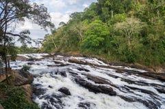 Падение воды Athirappilly стоковая фотография rf