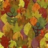 Падение выходит безшовная предпосылка картины Листва лист осени красочная иллюстрация вектора