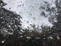 Падение дождя на стекле стоковые изображения