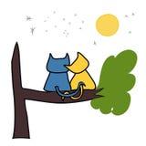 Падение котов в влюбленность Стоковое Фото