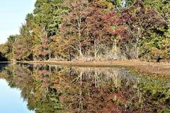 Падение на озеро стоковое изображение