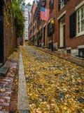 Падение на улицу жолудя, Бостон стоковые фотографии rf