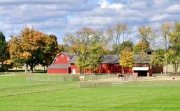 Падение на ферму семьи стоковое изображение rf