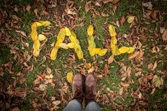 ПАДЕНИЕ сказанное по буквам вне с листьями Стоковое Изображение