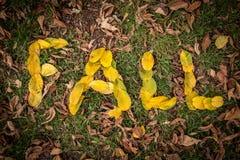 ПАДЕНИЕ сказанное по буквам вне с листьями Стоковые Фото