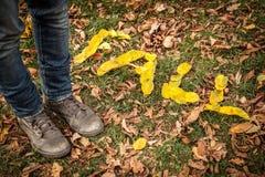 ПАДЕНИЕ сказанное по буквам вне с листьями Стоковые Фотографии RF