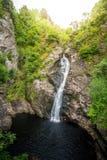 Падение фойе, водопад на фойе реки, который подает Лох-Несс, в гористой местности, Шотландия, Великобритания Стоковые Фотографии RF