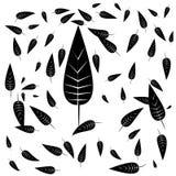 Падение черных листьев бесплатная иллюстрация