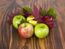 падение яблок Стоковые Фотографии RF