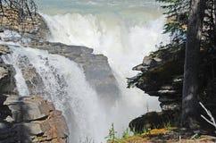 падение athabasca Стоковые Изображения