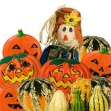 падение halloween украшения Стоковое Фото