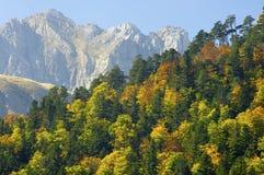 падение pyrenees стоковая фотография