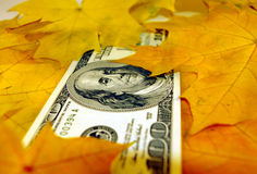 падение s доллара Стоковые Изображения RF