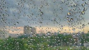 Падения воды на стеклянном окне Стоковая Фотография