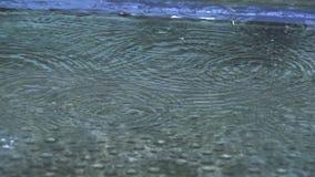Падения дождевой воды осени понижаясь в большую лужицу видеоматериал