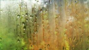 Падения дождя окна стоковое изображение rf