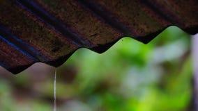 Падения дождя падать медленный акции видеоматериалы