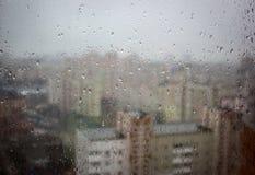 Падения дождя стоковое изображение