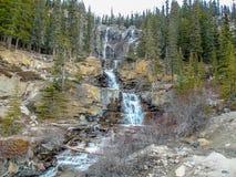 Падения заводи путать, национальный парк яшмы, Альберта, Канада Стоковое Фото
