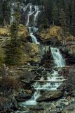 Падения заводи путать, национальный парк яшмы, Альберта, Канада Стоковая Фотография RF