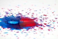 Падения краски и выплеск кроны стоковое изображение