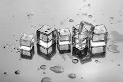 Падения кубиков и воды льда Стоковое Фото