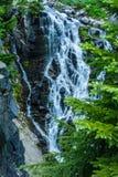 Падения Миртл - национальный парк Mount Rainier Стоковые Изображения
