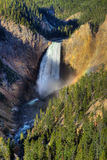 падения понижают np yellowstone стоковые фото