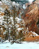 падения понижают yellowstone Стоковое Изображение RF