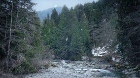 Падения снега на дикий ландшафт реки