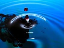 Падения падения/чернил фотографии макроса, голубых и красных воды брызгают и пульсации, влажное, схематическое искусство, экологи Стоковое Изображение