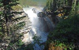 падения athabasca Стоковые Фото